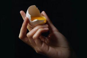 egg check